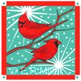 Cardinals and Snowflakes