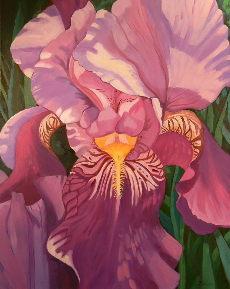 Purple Iris Majesty 30%22 x 24%22