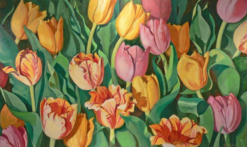 Tulip _Festival